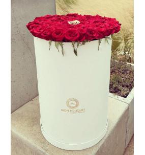Box XL Long Rose rouge...